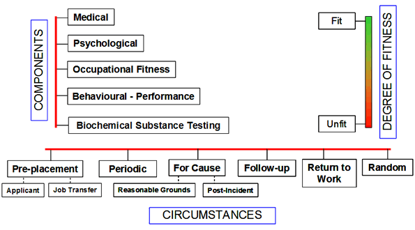 A conceptual framework of fitness for duty