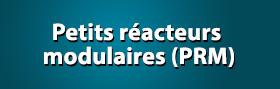 Petits réacteurs modulaires (PRM)